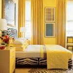yellow bedroom with zebra print