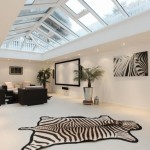 zebra rug and skylight