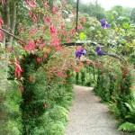 Penrhyn Castle-garden