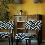 Mustard yellow feature wall with zebra print chairs