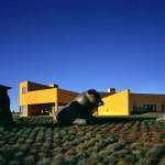 4.-Casa-Petaluma-yellow-house-architecture