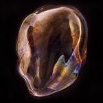bjoern Ewers – orbital 8
