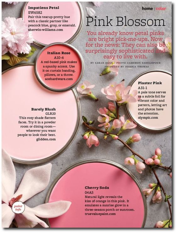 Pink Paint Color Schemes: Blossom
